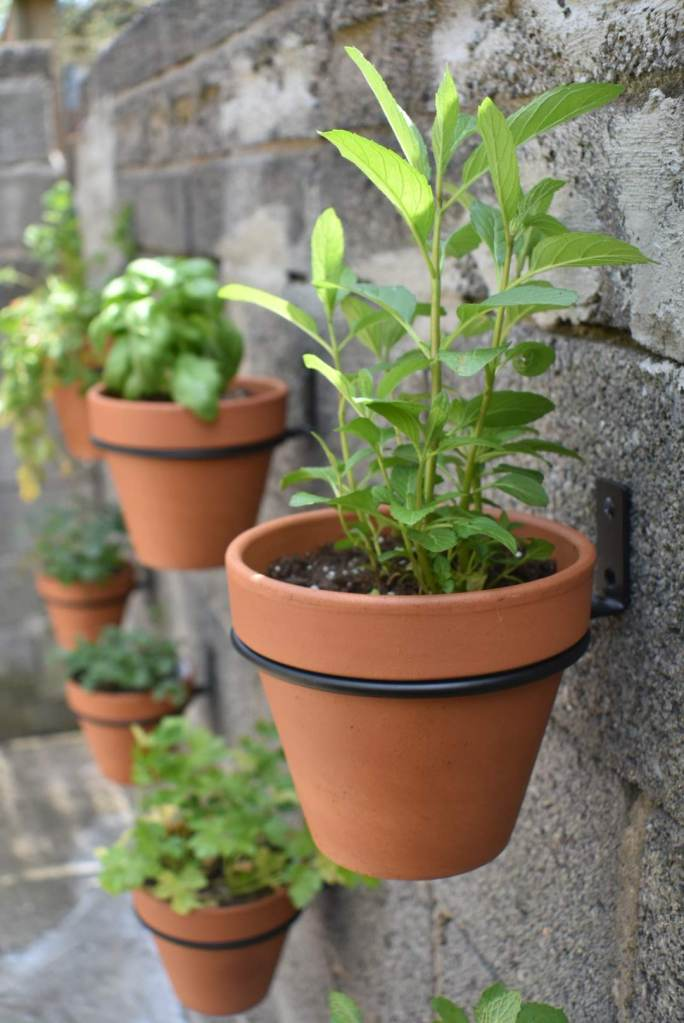 Hanging Flower pots with Herbs